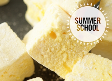 Marshmallows Summer School